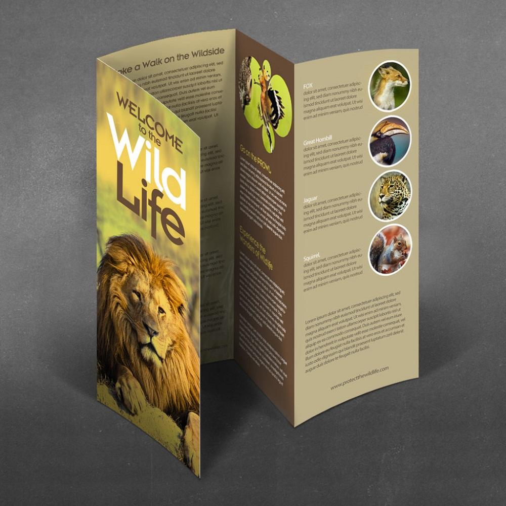 Pliant tip paralel - design realizat de MGS PRINT.WEB.GRAPHICS pentru Protect the Wild Life