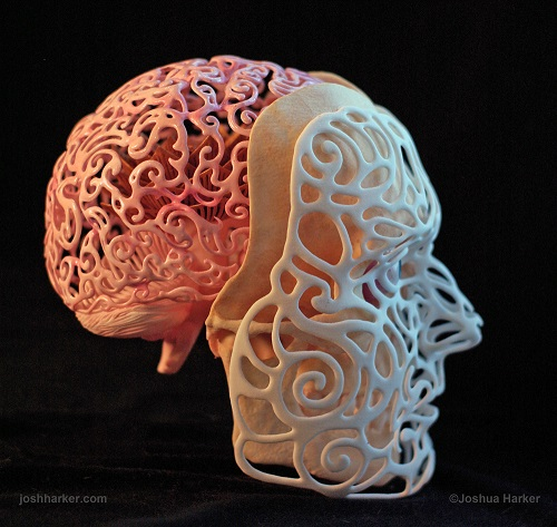 Formă anatomică realizată de Joshua Harker